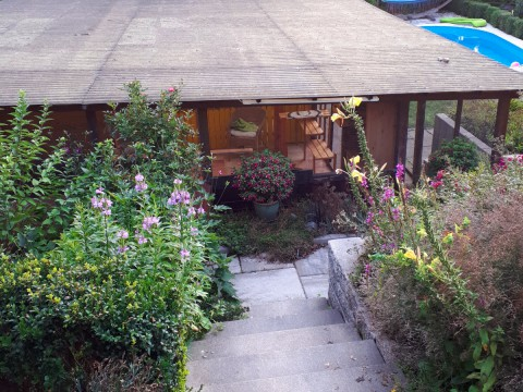 Katzen-Garten
